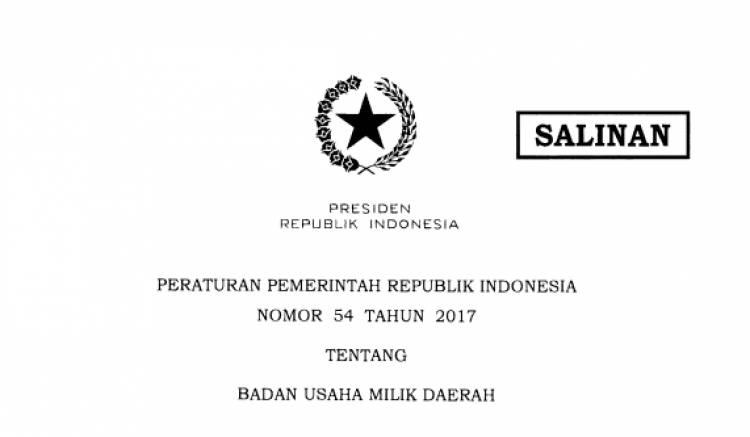 PERATURAN PEMERINTAH REPUBLIK INDONESIA NOMOR 54 TAHUN 2OI7 TENTANG BADAN USAHA MILIK DAERAH