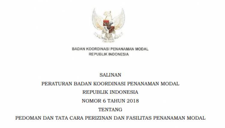 PERATURAN BADAN KOORDINASI PENANAMAN MODAL REPUBLIK INDONESIA NOMOR 6 TAHUN 2018 TENTANG PEDOMAN DAN TATA CARA PERIZINAN DAN FASILITAS PENANAMAN MODAL